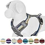 Blueberry Pet 3M Reflective Multi-colored Stripe Dog Harness