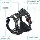 BABYLTRL harness