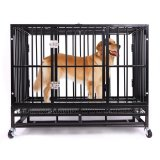 Haige Pet Large Metal Strong Dog Kennel Cage