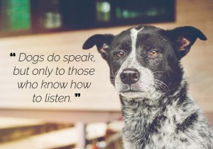 Dogs do speak but only to those who know how to listen