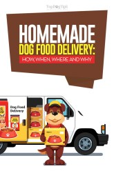 Homemade Dog Food Delivery Services from around the Globe