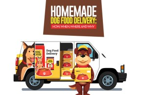 The 10 Best Homemade Dog Food Delivery Services from around the Globe
