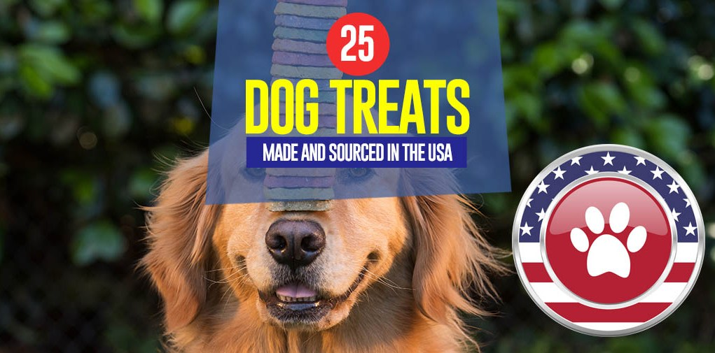 Top 25 Dog Treats Made in USA