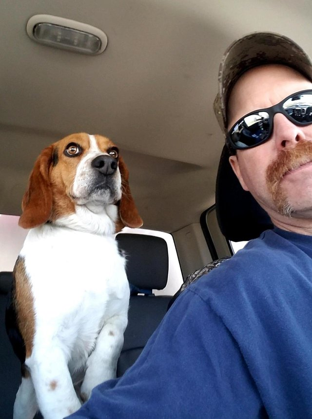 Gregory the Beagle is going to his new home