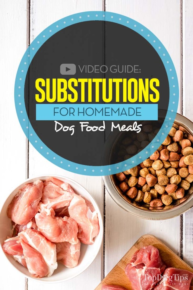 My Guide on Substitutions for Homemade Dog Food Recipes