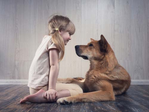 Socializing Dogs with Kids