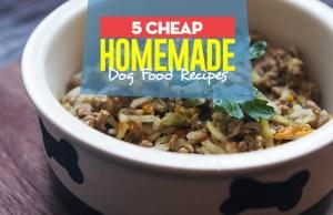 Top 5 Cheap Homemade Dog Food Recipes