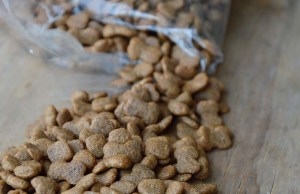 13 Tips on How to Store Dog Food Properly [Infographic]