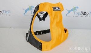 An Example Picture of Sleepypod Clickit Terrain Dog Harness