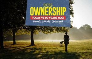 Comparing Dog Ownership Today vs 30 Years Ago