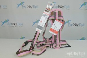 This is why a no pull dog harness is better than a collar/leash combo