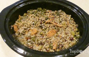 Homemade Dog Food for Joint and Hip Health