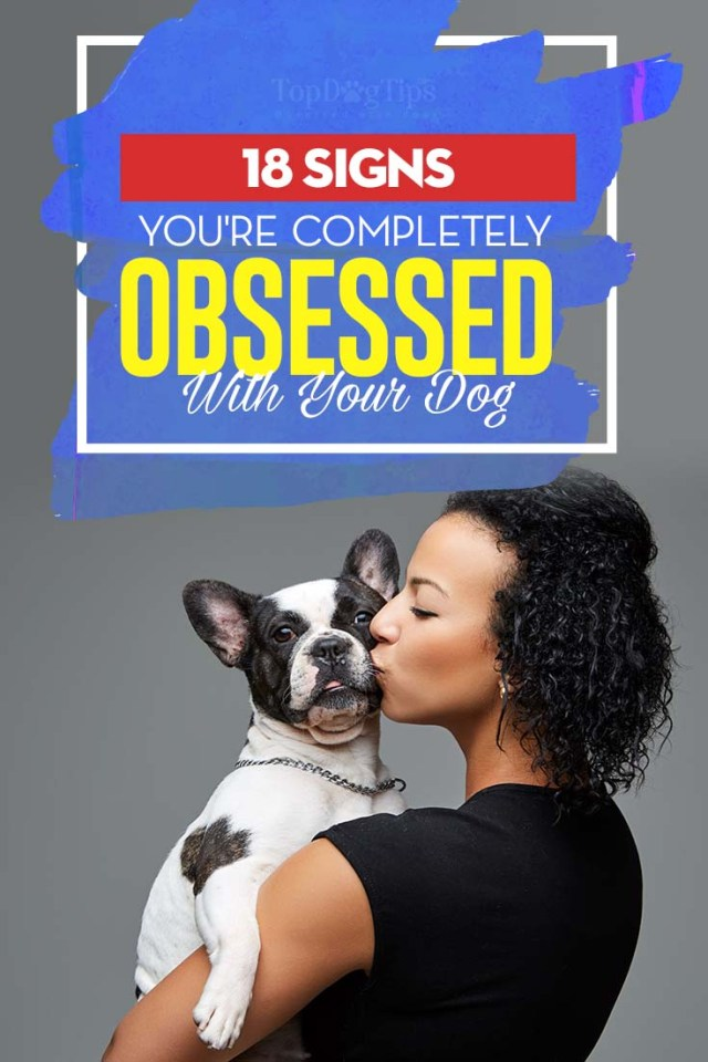 18 Signs You're Definitely Obsessed With Your Dog
