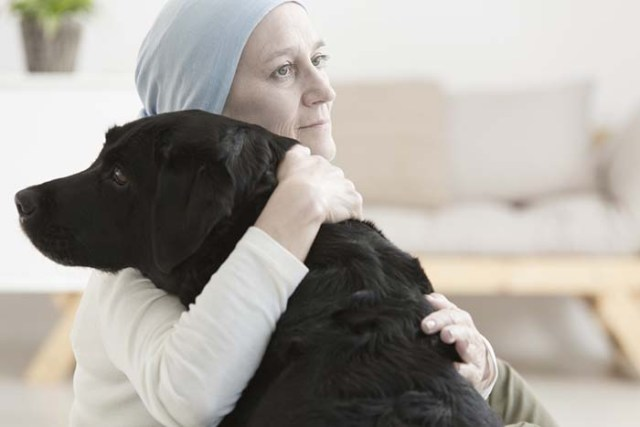 Dogs sense when you have an illness