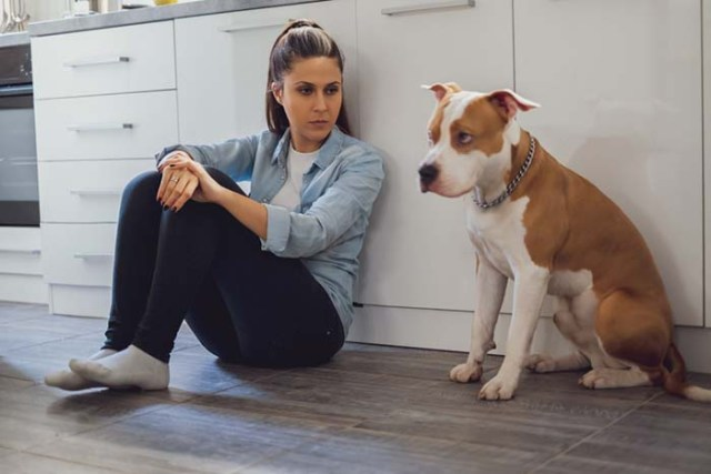 Dogs sense when you're mad at them