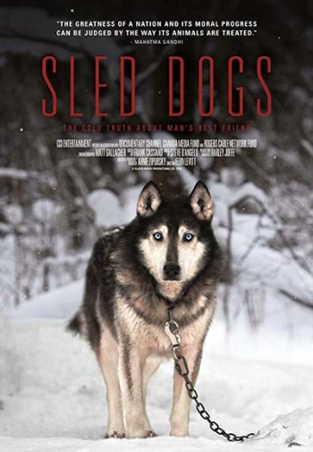 Sled Dog Soldiers dog documentary