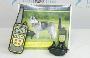iSPECLE Dog Training Collar Giveaway