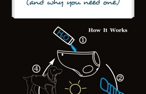 How a Dog Cooling Vest Works (and when you need one)