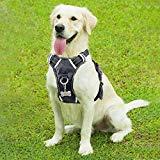 WINSEE No-Pull Walking Pet Vest Harness