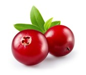 Cranberries for dogs