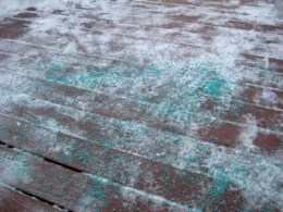De-Icing Salts May be Toxic and Cancerous for Dogs