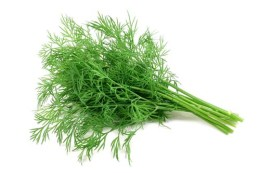 Dill for dogs