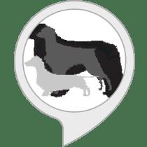 DogDays Alexa Skill