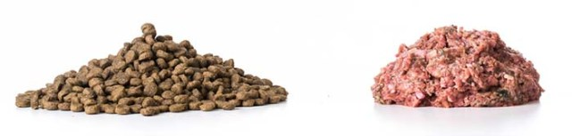 Raw feeding for dogs is better than dry dog food