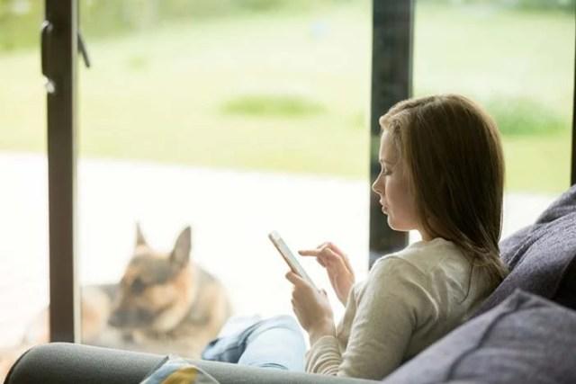Your dog manifests canine depression
