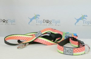 RC Pet Products Watermelon Dog Collar and Leash Giveaway