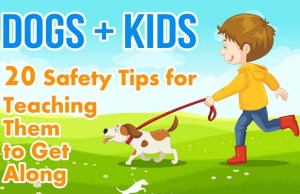 20 Safety Tips for Teaching Kids and Dogs to Get Along