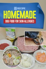 Best Homemade Dog Food for Skin Allergies Recipe