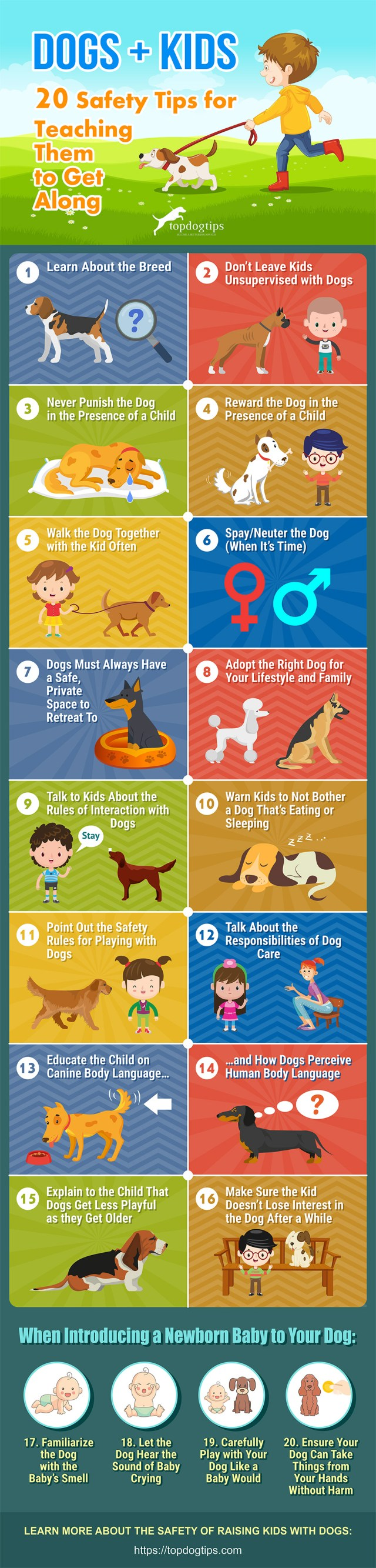 Infographic: 20 Safety Tips for Teaching Kids and Dogs to Get Along