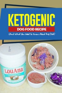 Ketogenic Dog Food Recipe (And What You Need to Know About this Diet)
