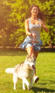 Start Slowly, and Bring Your Dog Into Shape