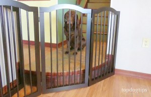 unipaws Freestanding Pet Gate