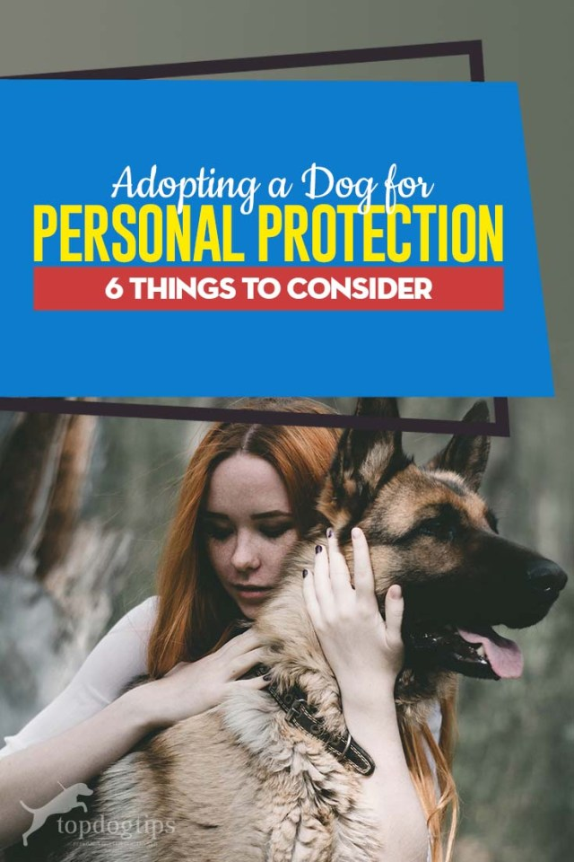 A Dog for Personal Protection - The 6 Things You Must Consider First