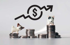 Explanation on How and Why Pet Ownership Costs Continue to Rise