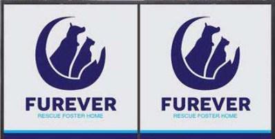 Furever Rescue Foster Home