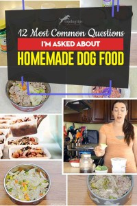 The 12 Most Common Questions I'm Asked About Homemade Dog Food