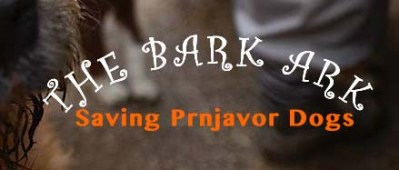 The Bark Ark