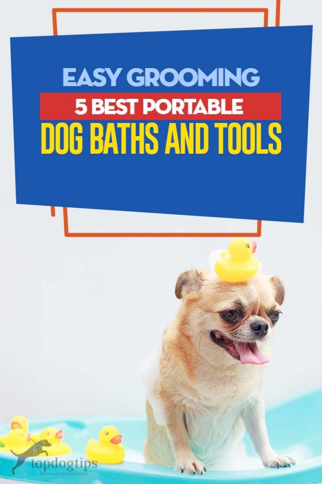 Top 5 Best Portable Dog Baths and Tools