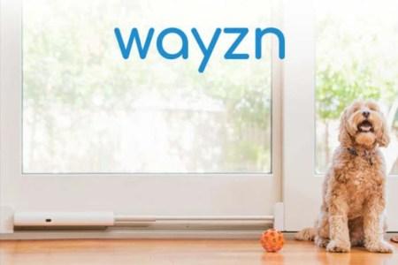 Connected Dog Door Openers - Wayzn