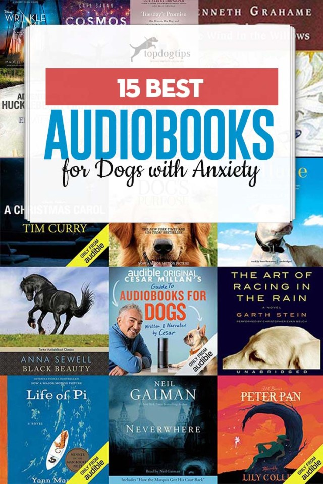 Top 15 Best Audiobooks for Dogs With Anxiety