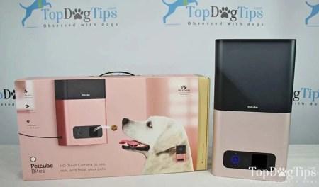 Treat-Dispensing Smart Pet Cameras - Petcube Bites