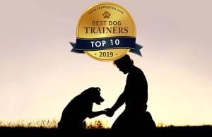 America's Best Dog Trainers