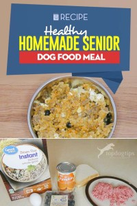 Healthy Homemade Senior Dog Food Recipe