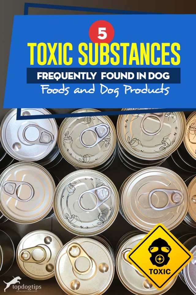 Top 5 Toxic Substances Frequently Found in Pet Foods and Pet Products