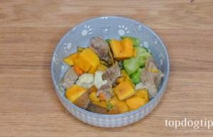 homemade gentle dog food
