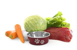 The Pros and Cons of Fresh Dog Food
